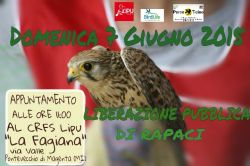 liberazione_rapaci_giugno2015