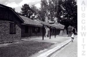 Auschwitz 001