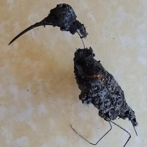 Marco Lavagetto, Upupa bruciata (dopo la combustione).