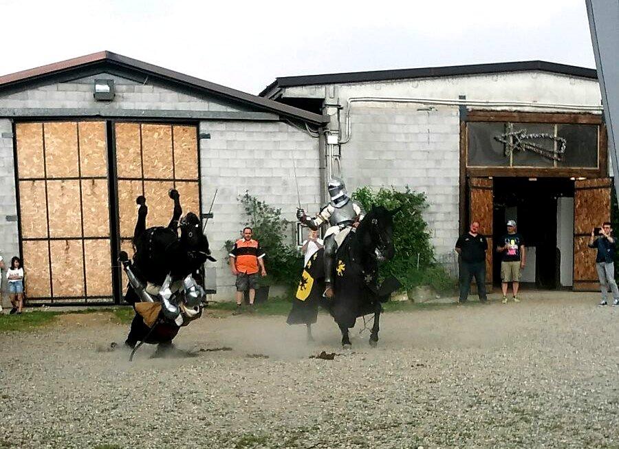 cavallo[9086]